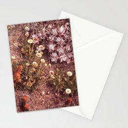 CALIFORNIA POINT LOBOS RESERVE NARA 543201 Stationery Cards