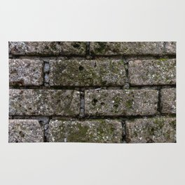Another Brick in the Wall Rug