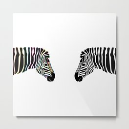 Zebra Reflection  Metal Print