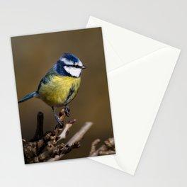 Blue tit (Cyanistes caeruleus) Stationery Cards