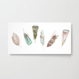 Feather collection in nature colors Metal Print
