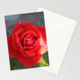 Soft Rose Stationery Cards