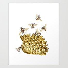 BEES and Honeycomb Art Print