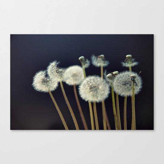 {wishes} Canvas Print