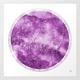 Southern Stars Rose Art Print