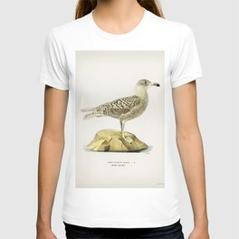 Glaucous gull (Larus glaucus) illustrated by the von Wright brothers T-shirt