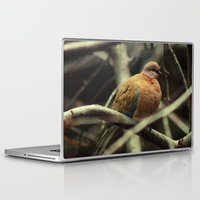 pigeon Laptop & iPad Skins featuring Pigeon by Zura