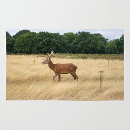 Walking Deer Rug