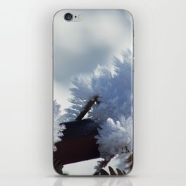Ice Crystals iPhone Skin