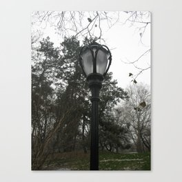 fading park light Canvas Print