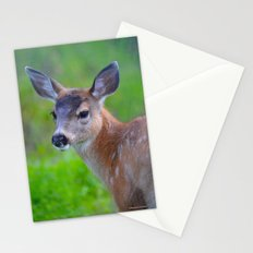 Sitka Black-Tail Fawn Stationery Cards
