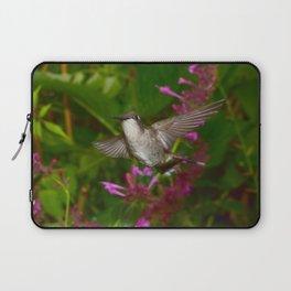 Hummingbird and pink agastache flower 44 Laptop Sleeve