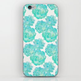 Rosette Succulents – Turquoise Palette iPhone Skin