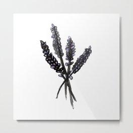 Lavender - Katrina Niswander Metal Print