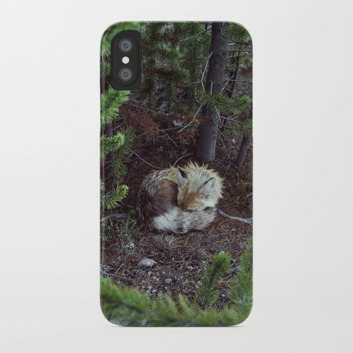 Sleeping Fox iPhone Case