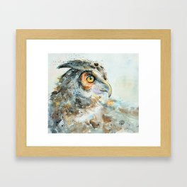 Predatory bird Framed Art Print