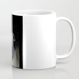 Entropy. and. Surprise!!  Coffee Mug