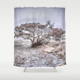 Madrone Tree Shower Curtain