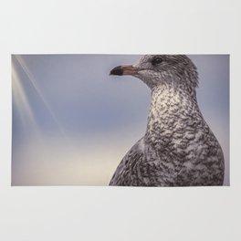 Johnathan Livingston Seagull Rug