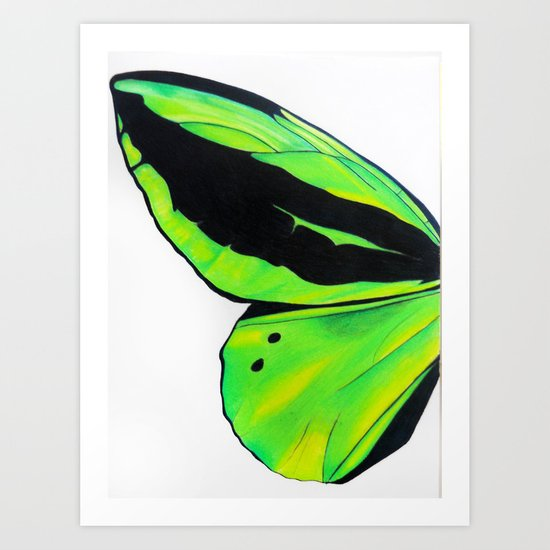Green Butterfly Wing Art Print