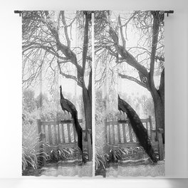 Bench Peacock Blackout Curtain