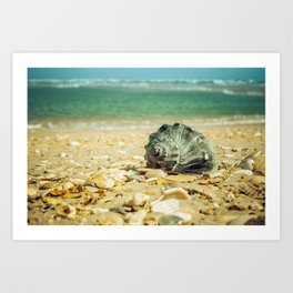 Daydreams on the Shore Nature / Coastal Photograph Art Print