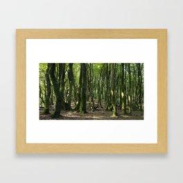 Troll trees - Rold Skov, Danmark Gerahmter Kunstdruck