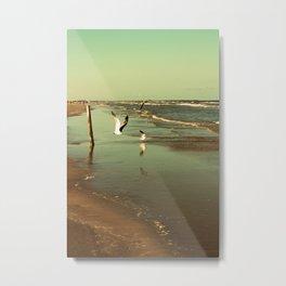 Padre Island, Corpus Christi, Texas Metal Print