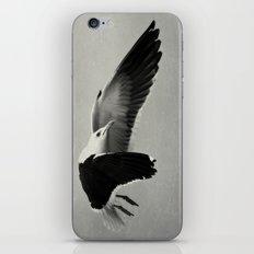 Performance II iPhone & iPod Skin
