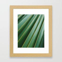 PALM LEAF Texture Framed Art Print