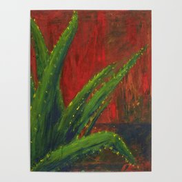 Study of an Aloe Plant Poster