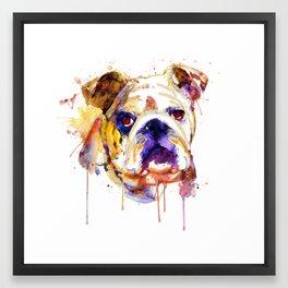 English Bulldog Head Framed Art Print
