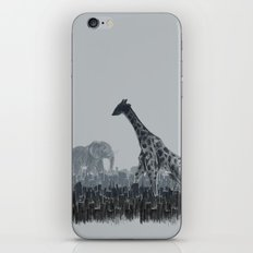 The Tall Grass iPhone & iPod Skin