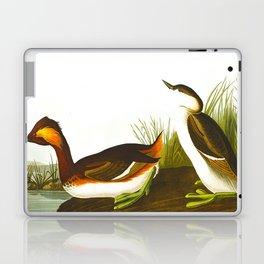 Eared Grebe Bird Laptop & iPad Skin
