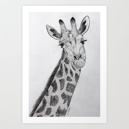 Flirty Giraffe Pencil Portrait Art Print