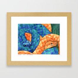 Pythons Framed Art Print