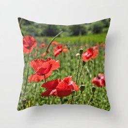 Poppies in Southern France Throw Pillow