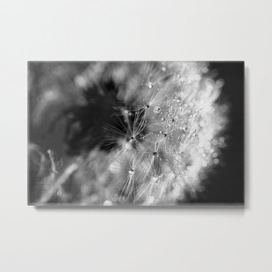 don't shed a tear Metal Print
