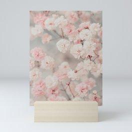 Gypsophila pink blush Mini Art Print
