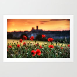Cathedral and Poppies Art Print