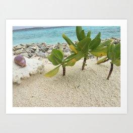 Ocean Photography Art Print