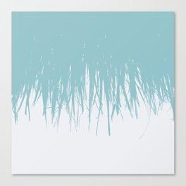 Fringe Salt Water Canvas Print