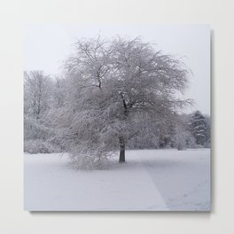 Tree and snow Metal Print