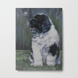 Landseer Newfoundland Dog Art from an original painting by L.A.Shepard Metal Print