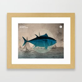 Northern Bluefin Framed Art Print