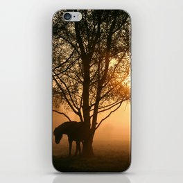 Silhouette of a horse iPhone Skin