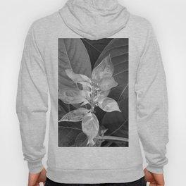 Flower #1 Black and White Hoody