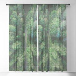 Arial Arboreal Sheer Curtain