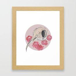 Bird Skull WaterColor Framed Art Print