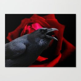 Surreal Crow against Red Rose A590 Canvas Print